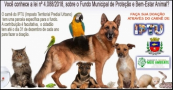 Contribuintes podem fazer doação em prol da causa animal no IPTU